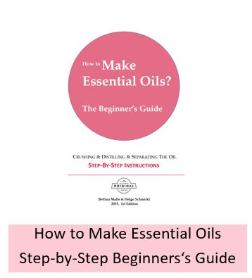 How to make essential oils and hydrosols? Step-by-step guide