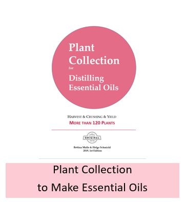 Plant collection - 120 plants: harvest + crushing + plant part used + yield
