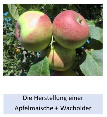 Alle Details zur Herstellung einer Apfelmaische mit Wacholder
