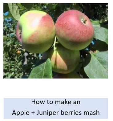 How to make an apple with juniper berries mash
