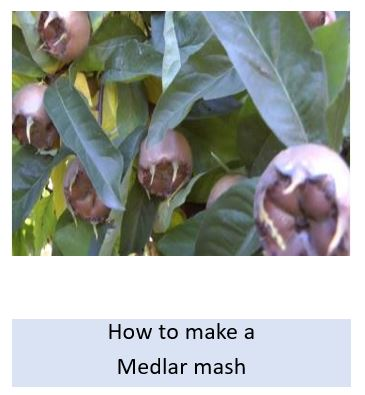 How to make a medlar mash