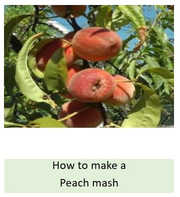 How to make a peach mash
