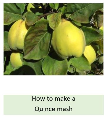 How to make a quince mash